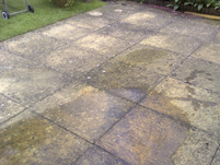 A patio that had not been cleaned for a number of years