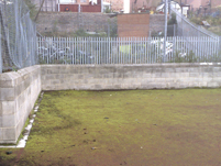 This heavily mossed football pitch urgently required cleaning