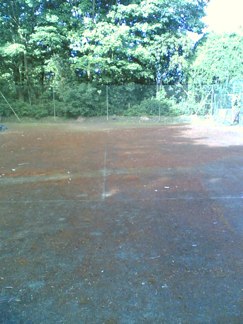 A heavily mossed unplayable tennis court before cleaning